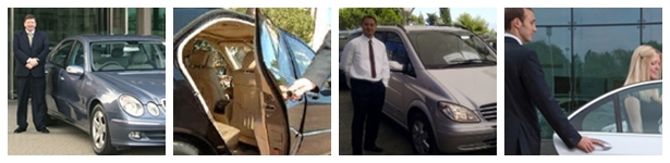 Angazovanje profesionalnih vozaca IPON